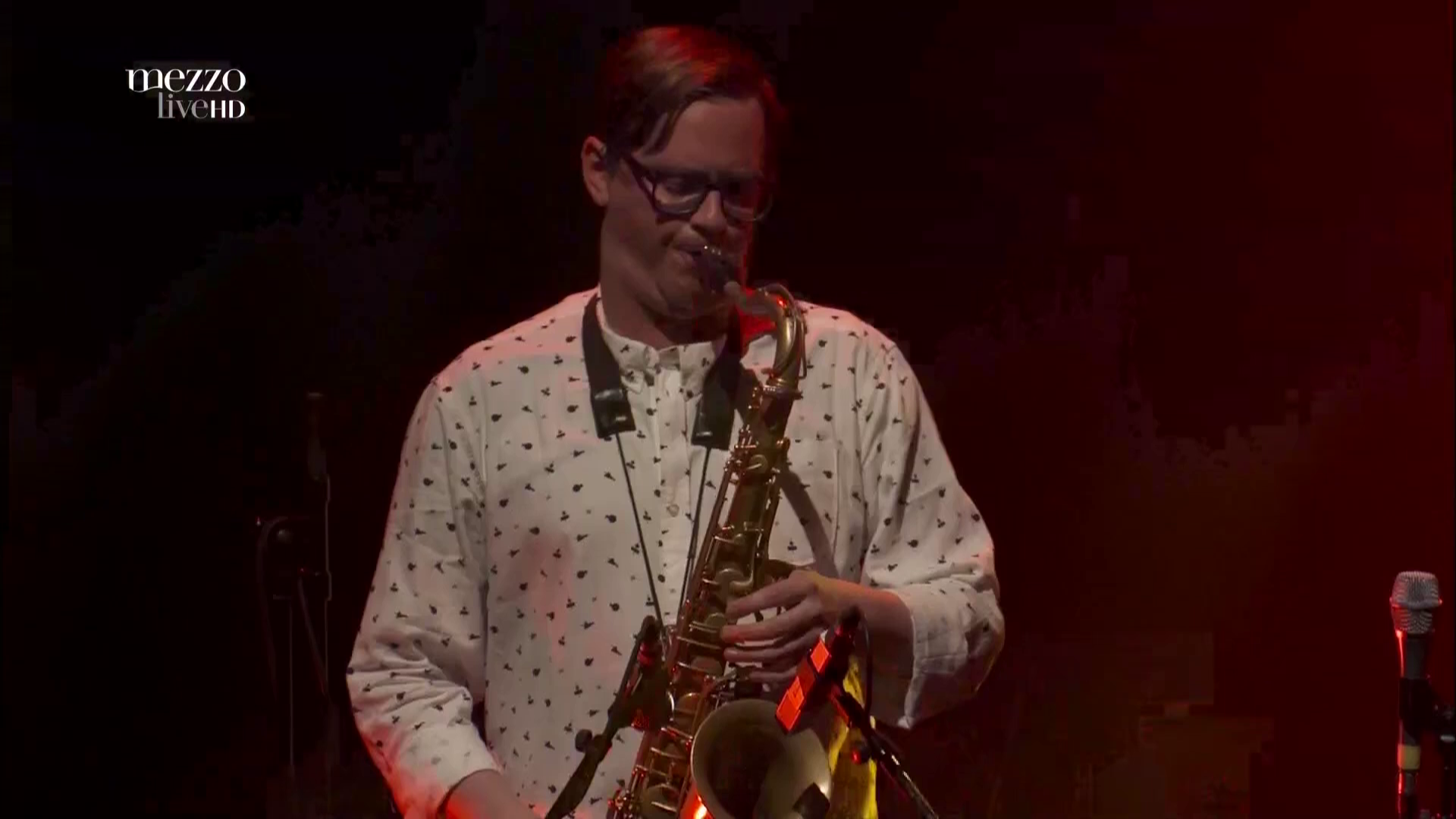 2017 Snarky Puppy - Live In Paris [HDTV 1080i] 1